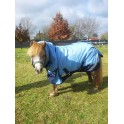 1200 Denier 300g Fill Winter Mini Combo Horse Rug Blue