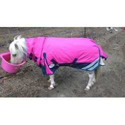 1200 Denier 300g Fill Winter Mini Combo Horse Rug Pink / Black