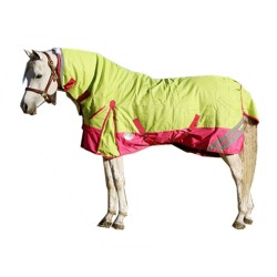 1200D 180g Combo Horse Rug Lime / Pink