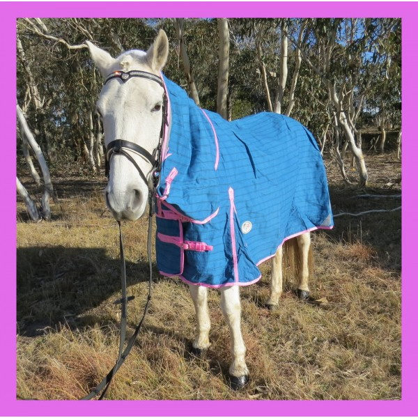 18OZ Unlined Combo Canvas Horse Rug Pink