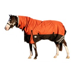 5'6, 6'3, 6'6 1200D Fleece Lined Rainsheet Combo Horse Rug Orange / Black